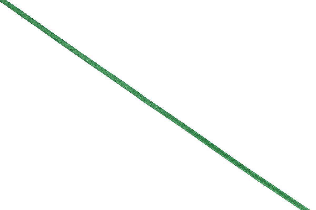 Лента атласная Prym, цвет: ярко-зеленый, ширина 3 мм, длина 50 м697069_42Атласная лента Prym изготовлена из 100% полиэстера. Область применения атласной ленты весьма широка. Изделие предназначено для оформления цветочных букетов, подарочных коробок, пакетов. Кроме того, она с успехом применяется для художественного оформления витрин, праздничного оформления помещений, изготовления искусственных цветов. Ее также можно использовать для творчества в различных техниках, таких как скрапбукинг, оформление аппликаций, для украшения фотоальбомов, подарков, конвертов, фоторамок, открыток и многого другого. Ширина ленты: 3 мм. Длина ленты: 50 м.