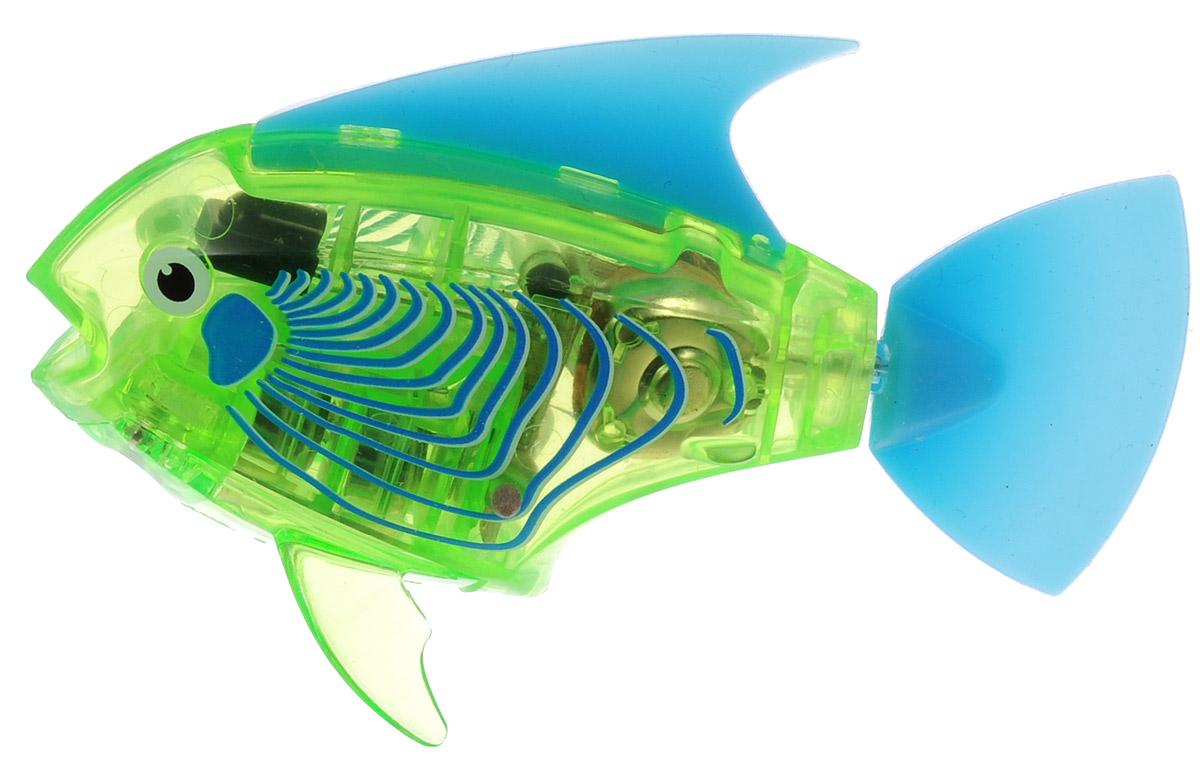 Hexbug Микро-робот на радиоуправлении Рыба-ангел цвет зеленый460-4086_2Уникальный микро-робот Hexbug Angelfish изготовлен из безопасного пластика в виде очаровательной маленькой рыбки. Теперь микро-роботы осваивают и водные глубины! Робот плавает и ведет себя как настоящая рыбка. Это обновленная версия робо-рыбки, управляемая при помощи пульта. Кроме того, управляемая рыбка-ангел получила яркий и привлекательный окрас плавничков и хвостика, а также стильный декор. Наделив рыбку пультом ДУ, разработчики не лишили ее самостоятельности. Если вы не хотите управлять рыбкой, то просто пустите ее в аквариум и она будет плавать сама. Не утратила прирученная рыбка и первоначальных свойств: как и раньше аквабот просыпается от стука по стенкам аквариума и светится в темноте. Вне воды он автоматически выключается. Робот-рыбка оснащен световыми эффектами. Для работы игрушки необходимы 4 батарейки типа LR44 (товар комплектуется демонстрационными).