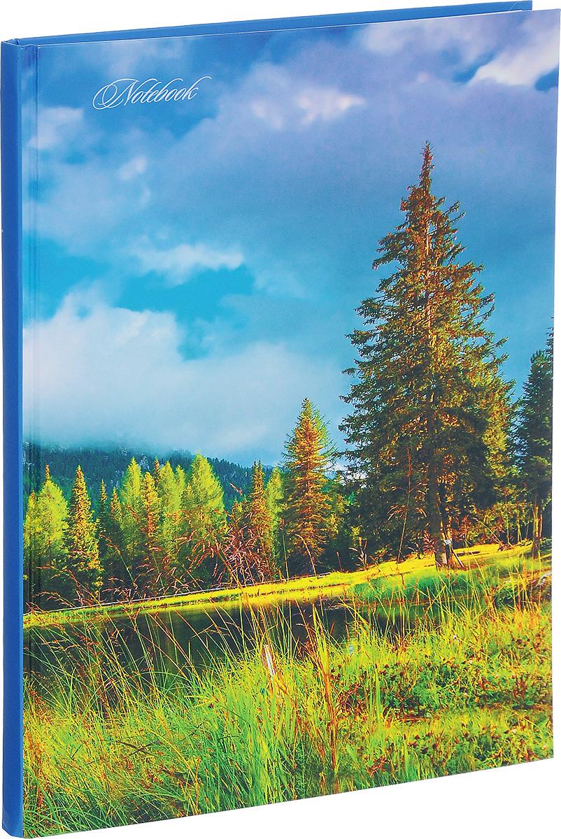 Listoff Записная книжка Лесное озеро 100 листов в клеткуКЗ41001707Записная книжка Listoff Лесное озеро - незаменимый атрибут современного человека, необходимый для рабочих и повседневных записей в офисе и дома. Записная книжка содержит 100 листов формата А4 в клетку. Обложка, выполненная из ламинированного картона, украшена изображением деревьев на берегу озера. Внутренний блок изготовлен из высококачественной плотной бумаги, что гарантирует чистоту записей и отсутствие клякс. Записная книжка Listoff Лесное озеро станет достойным аксессуаром среди ваших канцелярских принадлежностей. Она подойдет как для деловых людей, так и для любителей записывать свои мысли, рисовать скетчи, делать наброски.
