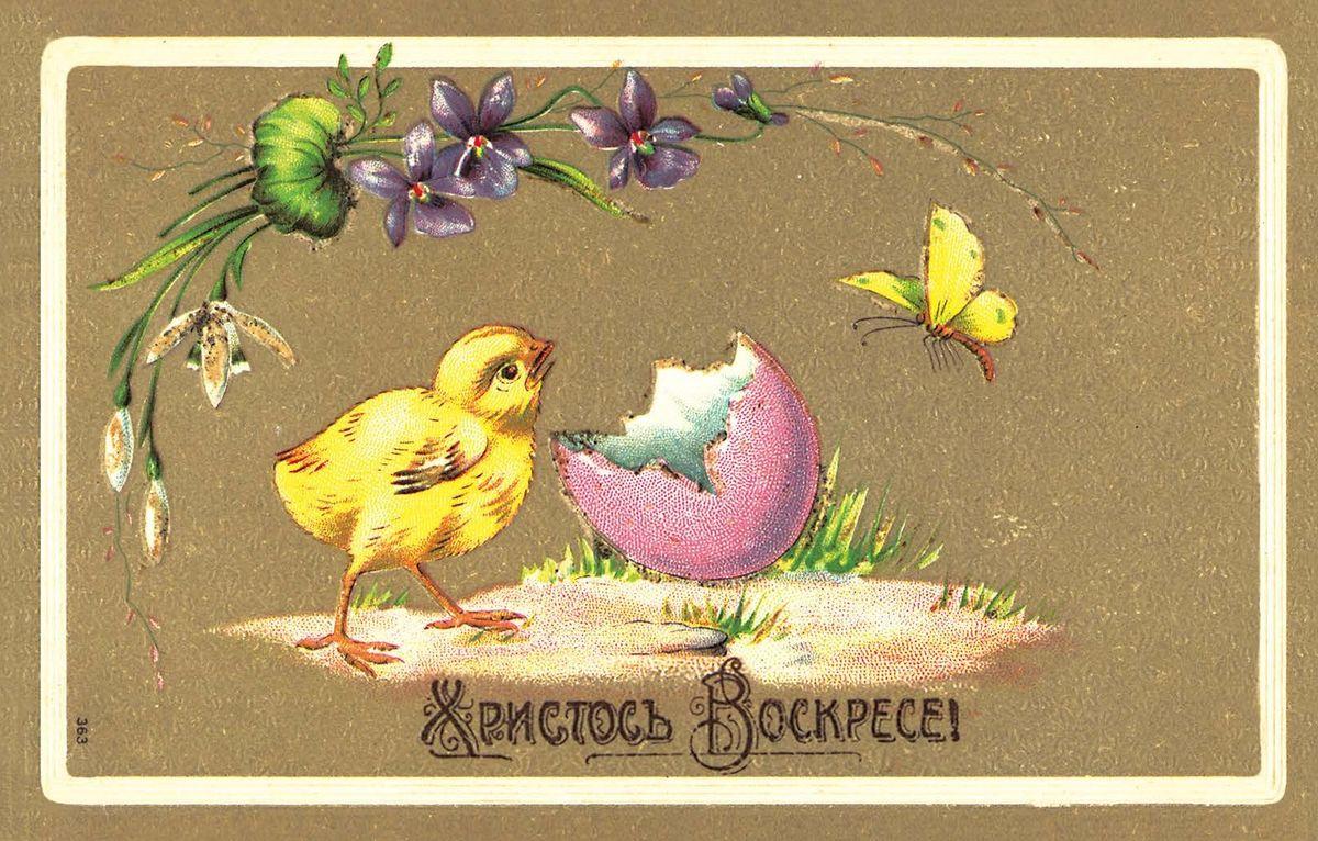 Поздравительная открытка в винтажном стиле Пасха. ОТКР №84ОТКР №84Оригинальная поздравительная открытка Пасха выполнена из плотного матового картона. На лицевой стороне расположено красочное изображение очаровательного цыпленка на фоне яичной скорлупки и цветов. Обратная сторона открытки имеет место для марки и свободное пространство, на котором вы сможете написать собственное послание. Необычная и яркая открытка в винтажном стиле поможет вам выразить чувства и передать теплые поздравления. Такая открытка станет великолепным дополнением к подарку или оригинальным почтовым посланием, которое, несомненно, удивит получателя своим дизайном и подарит приятные воспоминания.