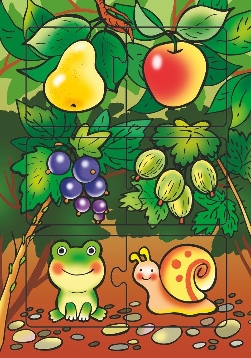 Дрофа-Медиа Пазл В саду1928Пазл Дрофа-Медиа В саду, без сомнения, придется по душе вашему ребенку. Собрав этот пазл, включающий в себя 6 элементов, вы получите картинку с изображением лягушки и улитки в окружении фруктовых деревьев. Элементы пазла выкладываются на рамку, которая поможет малышу увидеть, что он делает правильно, а над чем еще нужно подумать. Пазл Дрофа-Медиа В саду научит ребенка усидчивости, умению доводить начатое дело до конца, поможет развить внимание, память, образное и логическое мышление, сенсорно-моторную координацию движения рук. Собирание пазла способствует развитию мелкой моторики, которая напрямую влияет на развитие речи и интеллектуальных способностей. В дальнейшем хорошая координация движений рук поможет ребенку легко овладеть письмом.