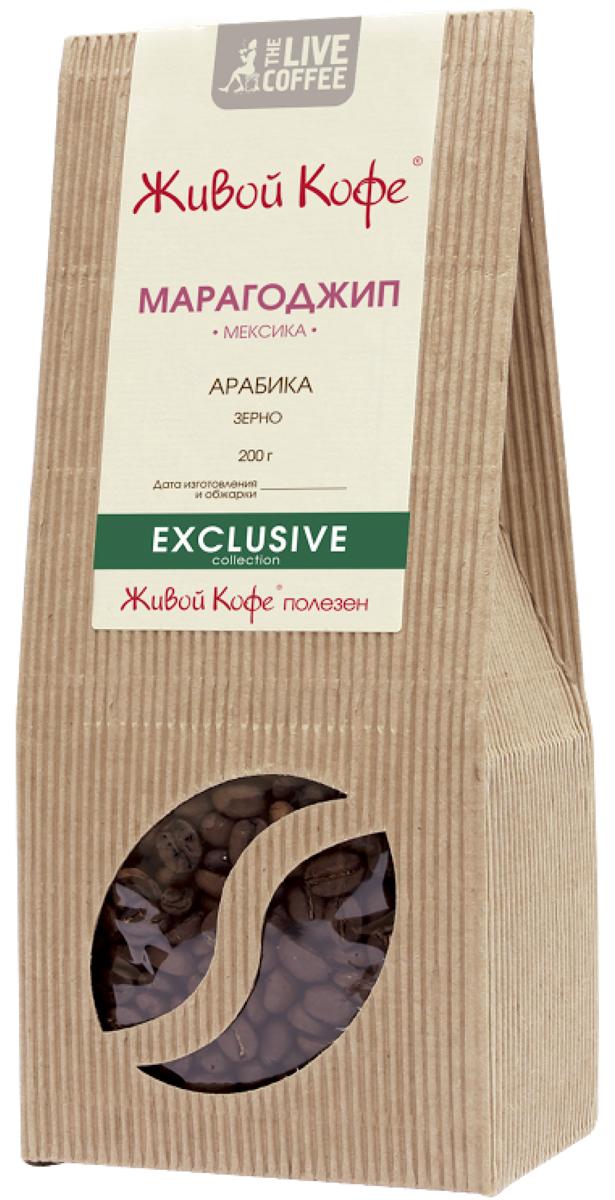Живой кофе Марагоджип кофе в зернах, 200 гУПП00000207Живой кофе Марагоджип - это кофе с огромными маслянистыми зернами, которые превосходят размерами известные сорта арабики в 3.5 раза. В этом сорте сплелись традиции и новаторство, ручной труд и высокие технологии. Один из самых популярных сортов кофе в мире.