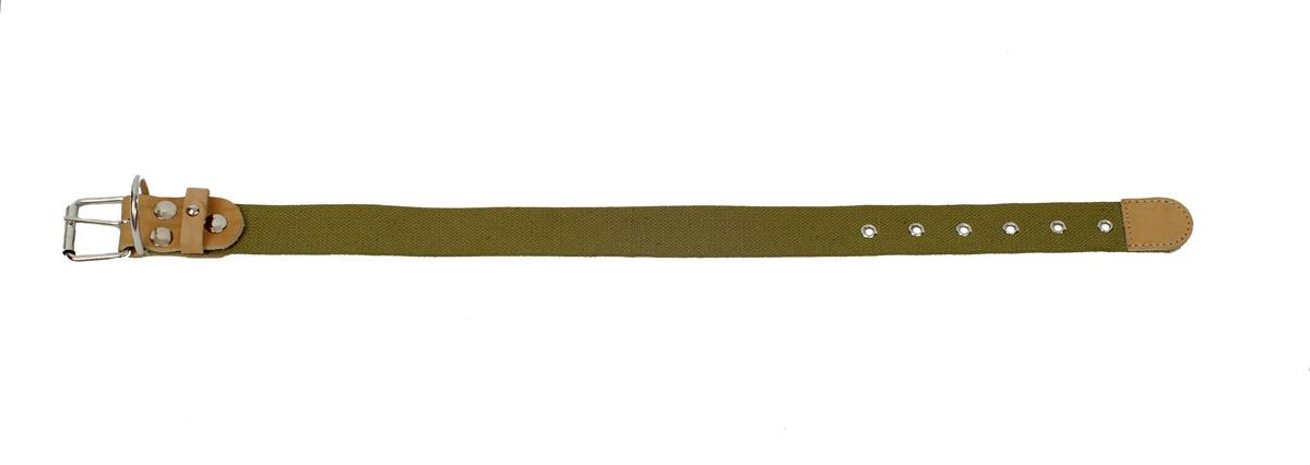 Ошейник Аркон, 35 мм, брезентовый. о35бо35бОшейники компании «Аркон» полностью отвечают требованиям современных мировых кинологических стандартов. Все ошейники выполнены из лучшей шорно-седельной кожи, устойчивой к влажности и перепадам температур. Клеевой слой, сверхпрочные нити, крепкие металлические элементы делают ошейники от компании «Аркон» еще более надежными и долговечными