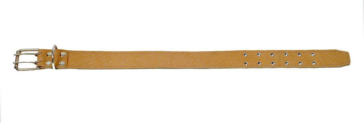 Ошейник Аркон Брезент, цвет: бежевый, хаки, ширина 4,5 см, длина 68,5 смо45бк/сОшейник Аркон Брезент с подкладкой из брезента изготовлен из кожи, устойчивой к влажности и перепадам температур. Клеевой слой, сверхпрочные нити, крепкие металлические элементы делают ошейник надежными и долговечными. Изделие отличается высоким качеством, удобством и универсальностью. Размер ошейника регулируется при помощи пряжки, зафиксированной на двух из 12 отверстий. Минимальный обхват шеи: 46 см. Максимальный обхват шеи: 61 см. Ширина: 4,5 см.