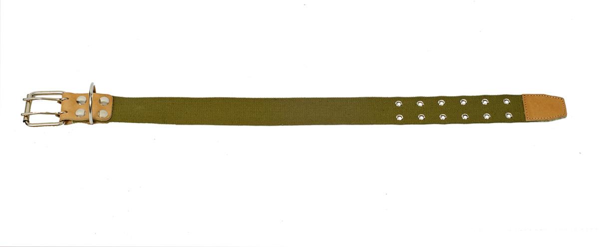 Ошейник Аркон, 45 мм, брезентовый средний. о45бр/со45бр/сОшейники компании «Аркон» полностью отвечают требованиям современных мировых кинологических стандартов. Все ошейники выполнены из лучшей шорно-седельной кожи, устойчивой к влажности и перепадам температур. Клеевой слой, сверхпрочные нити, крепкие металлические элементы делают ошейники от компании «Аркон» еще более надежными и долговечными