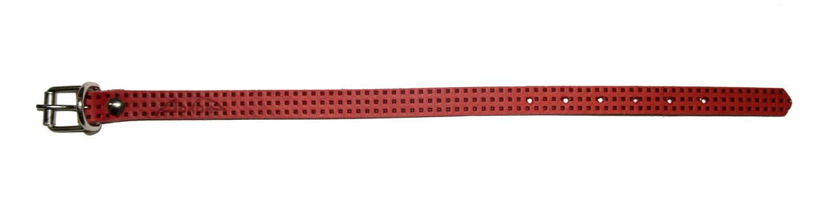 Ошейник Аркон, 14 мм, с тиснением F1, цвет: красный. о14фкро14фкрОшейники компании «Аркон» полностью отвечают требованиям современных мировых кинологических стандартов. Все ошейники выполнены из лучшей шорно-седельной кожи, устойчивой к влажности и перепадам температур. Клеевой слой, сверхпрочные нити, крепкие металлические элементы делают ошейники от компании «Аркон» еще более надежными и долговечными