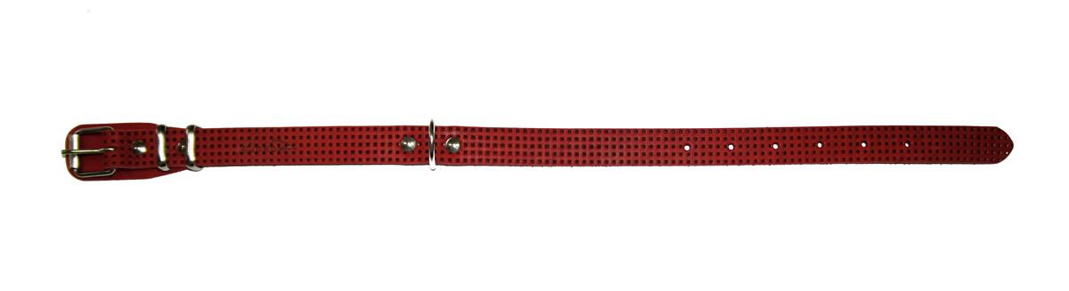 Ошейник Аркон, 20 мм, с тиснением F1, цвет: красный. о20фкро20фкрОшейники компании «Аркон» полностью отвечают требованиям современных мировых кинологических стандартов. Все ошейники выполнены из лучшей шорно-седельной кожи, устойчивой к влажности и перепадам температур. Клеевой слой, сверхпрочные нити, крепкие металлические элементы делают ошейники от компании «Аркон» еще более надежными и долговечными