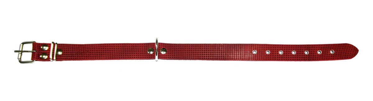 Ошейник Аркон Стандарт, с тиснением, цвет: красный, ширина 3,5 см, длина 69 см. о35фо35фкрОшейник Аркон Стандарт изготовлен, устойчивой к влажности и перепадам температур. Клеевой слой, сверхпрочные нити, крепкие металлические элементы делают ошейник надежным и долговечным. Ошейник оформлен тиснением. Изделие отличается высоким качеством, удобством и универсальностью. Размер ошейника регулируется при помощи пряжки, зафиксированной на одном из 7 отверстий. Минимальный обхват шеи: 46 см. Максимальный обхват шеи: 63 см. Ширина: 3,5 см.