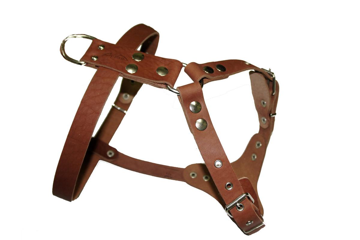 Шлейка для собак Аркон Стандарт №0, водильная, цвет: коньячный, обхват груди 50-67 смш0кШлейка для собак Аркон Стандарт №0 изготовлена из искусственной кожи. Подходит для пород шарпей, французский бульдог, далматинец и других собак. Крепкие металлические элементы делают ее надежной и долговечной. Шлейка - это альтернатива ошейнику. Правильно подобранная шлейка не стесняет движения питомца, не натирает кожу, поэтому животное чувствует себя в ней уверенно и комфортно. Изделие отличается высоким качеством, удобством и универсальностью. Размер регулируется при помощи пряжек, зафиксированных в одном из отверстий. Обхват шеи: 63-81 см. Обхват груди: 50-67 см. Длина спинки: 14 см. Длина нагрудной лямки: 28 см. Ширина ремней: 2,5 см; 3,5 см.