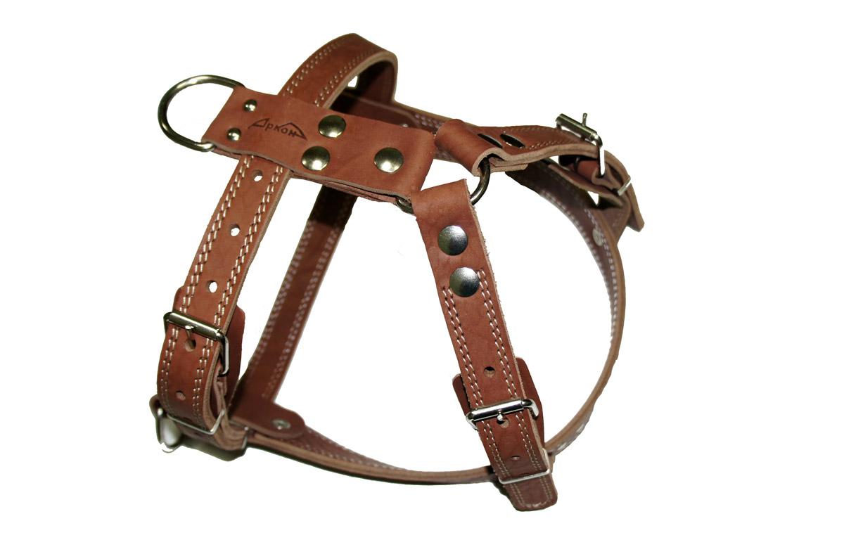 Шлея Аркон №1 ездовая, цвет: коньячный. ш1екш1екШлейка - это альтернатива ошейнику. Правильно подобранная шлейка от компании «Аркон» не стесняет движения собаки, не натирает кожу, поэтому животное чувствует себя в ней уверенно и комфортно.