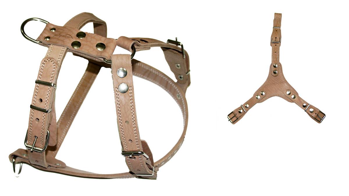 Шлея Аркон №2 универсальная. ш2уш2уШлейка - это альтернатива ошейнику. Правильно подобранная шлейка от компании «Аркон» не стесняет движения собаки, не натирает кожу, поэтому животное чувствует себя в ней уверенно и комфортно.