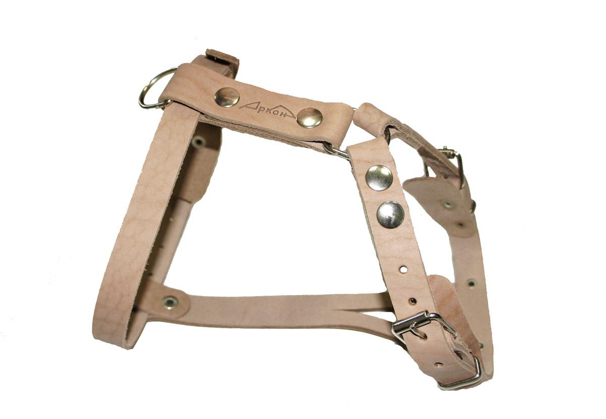 Шлейка Аркон К. шкшкШлейка - это альтернатива ошейнику. Правильно подобранная шлейка не стесняет движения собаки, не натирает кожу, поэтому животное чувствует себя в ней уверенно и комфортно. Минимальный обхват груди: 45 см. Максимальный обхват груди: 64 см. Минимальный обхват шеи: 35 см. Максимальный обхват шеи: 46 см.