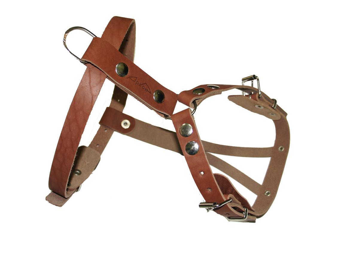 Шлейка для собак Аркон Стандарт, цвет: коньячный, длина 13 смшккШлейка для собак Аркон Стандарт изготовлена из и натуральной кожи. Подходит для пород коккер-спаниель, французский бульдог и других собак. Крепкие металлические элементы делают ее надежной и долговечной. Шлейка - это альтернатива ошейнику. Правильно подобранная шлейка не стесняет движения питомца, не натирает кожу, поэтому животное чувствует себя в ней уверенно и комфортно. Изделие отличается высоким качеством, удобством и универсальностью. Размер регулируется при помощи пряжек, зафиксированных в одном из 12 отверстий. Обхват шеи: 37 - 50 см. Обхват груди: 35 - 62 см. Длина спинки: 13 см. Длина нагрудной лямки: 24,5 см. Ширина ремней: 2,5 см; 2 см; 1,3 см.
