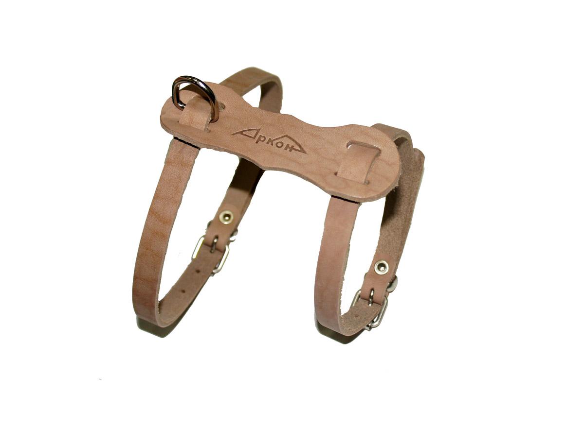 Шлейка Аркон Люкс. шлшлШлейка - это альтернатива ошейнику. Правильно подобранная шлейка от компании «Аркон» не стесняет движения собаки, не натирает кожу, поэтому животное чувствует себя в ней уверенно и комфортно.
