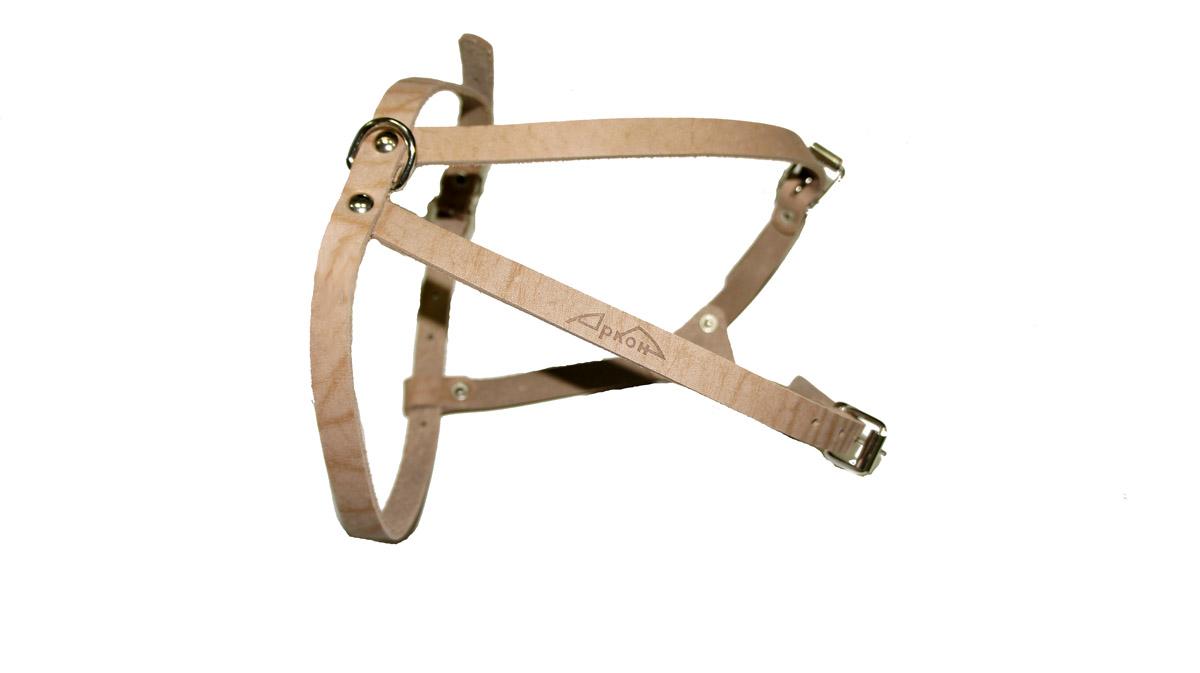 Шлейка Аркон М. шмшмШлейка - это альтернатива ошейнику. Правильно подобранная шлейка от компании «Аркон» не стесняет движения собаки, не натирает кожу, поэтому животное чувствует себя в ней уверенно и комфортно.