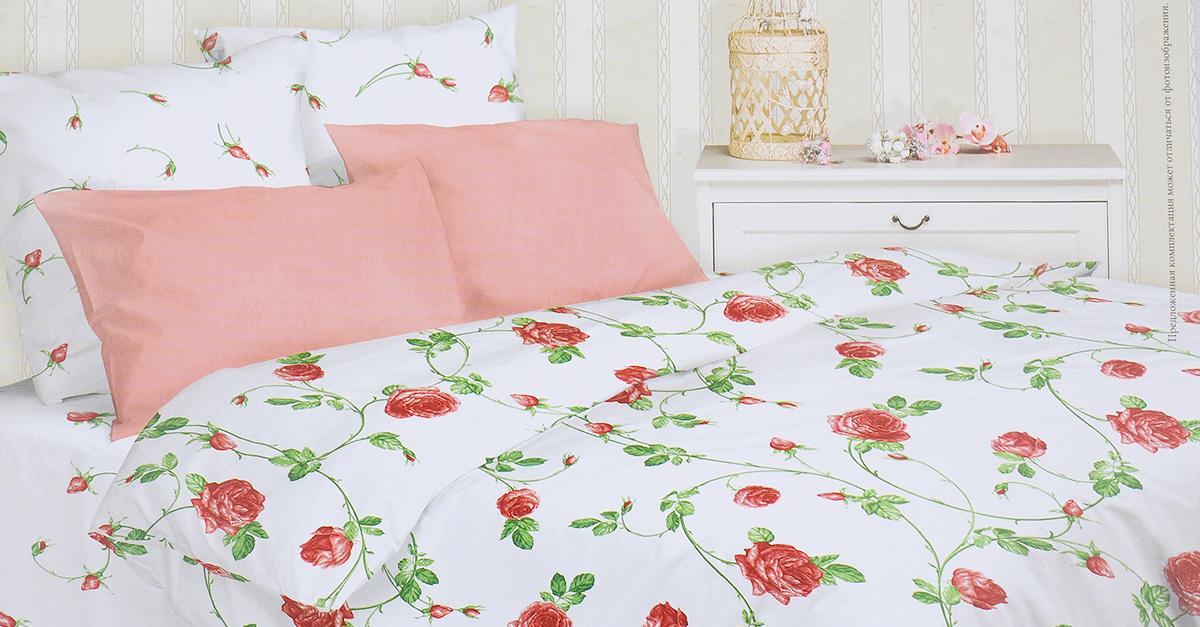 Комплект белья Mirarossi Vittoria, 1,5-спальный, наволочки 50х70, цвет: белый, розовый, зеленый15п-2MRРоскошный комплект постельного белья Mirarossi Vittoria выполнен из ткани Перкаль, натурального 100% хлопка. Ткань приятная на ощупь, при этом она прочная, хорошо сохраняет форму и не образует катышков на поверхности. Инновационная технология обработки ткани Easy Care позволяет белью дольше оставаться свежим. Органические активные вещества Easy Care на основе натуральных компонентов, эффективно препятствуют сминаемости и деформации ткани, что позволяет вам практически не тратить время на глажку постельного белья. Комплект состоит из пододеяльника, простыни и двух наволочек. Изделия оформлены цветочным принтом. Благодаря такому комплекту постельного белья вы создадите неповторимую атмосферу в вашей спальне.