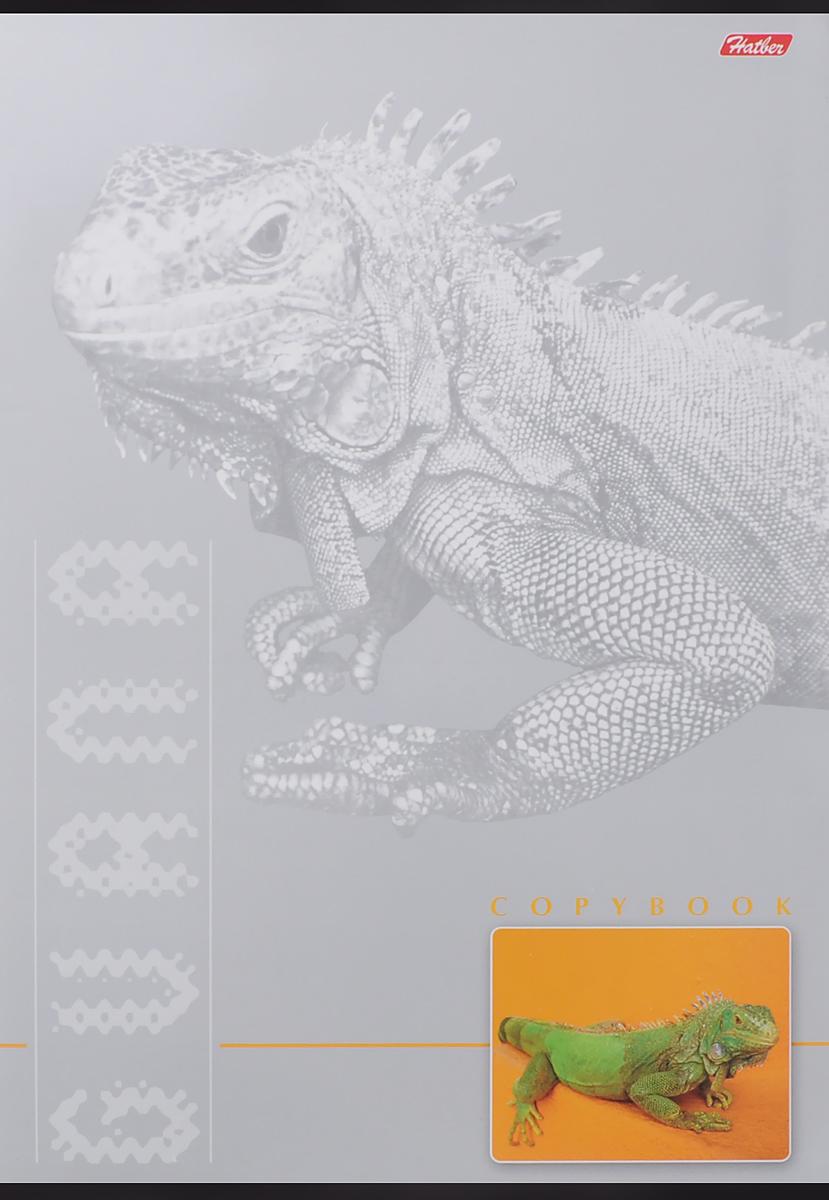 Hatber Тетрадь Guana 96 листов в клетку96Т4сB3_ИгуанТетрадь Hatber Guana подойдет как школьнику, так и студенту. Обложка тетради выполнена из картона и дополнена изображением ящерицы. Внутренний блок тетради на металлических скобах состоит из 96 листов белой бумаги с линовкой в клетку голубого цвета без полей.