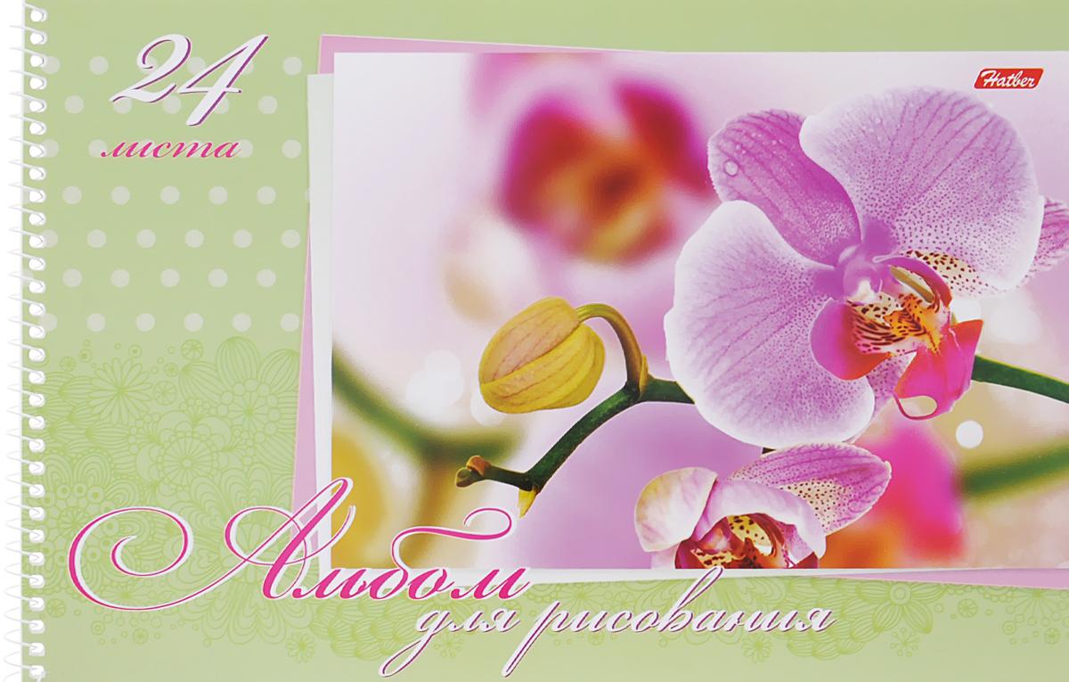 Hatber Альбом для рисования Нежность 24 листа цвет салатовый24А4Bсп_04373Альбом для рисования Hatber Нежность порадует вашего малыша и вдохновит его на творчество. Альбом изготовлен из белоснежной бумаги с яркой обложкой из плотного картона, оформленной изображением орхидеи. Внутренний блок альбома, соединенный металлической спиралью, состоит из 24 листов. Высокое качество бумаги позволяет рисовать в альбоме карандашами, фломастерами, акварельными и гуашевыми красками.