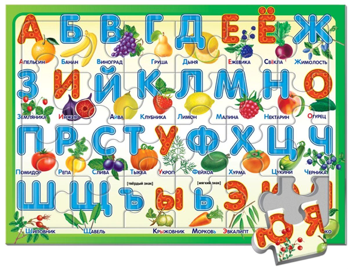 Русский стиль Пазл в рамке А3 Алфавит Дары природы03872Эта игра знакомит ребенка с графическим изображением букв алфавита. Составив все элементы-пазлы в единую картинку, малыш увидит перед собой алфавит русского языка. Буквы ребенок запоминает не сразу. Сначала он учится соотносить букву и название предмета, изображенного рядом. Игра служит начальным этапом подготовки ребенка к чтению, она способствует развитию зрительной и слуховой памяти, обогащает словарный запас ребенка. Малыш не только выучит буквы алфавита, но и запомнит названия фруктов, овощей и ягод. Игра для детей от 3 лет. Состав набора: Пазлы (24 элемента)