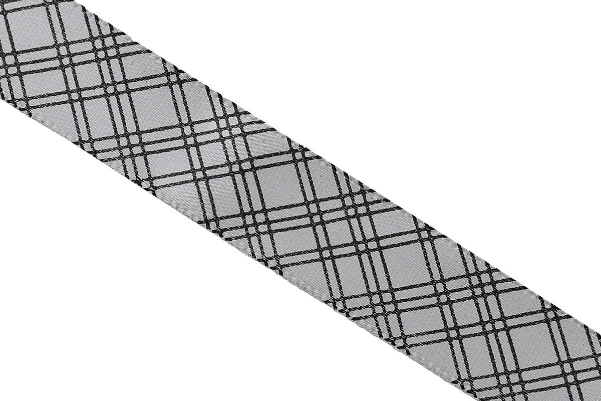 Лента атласная Dekor Line Пересечение, цвет: светло-серый, черный, 1,5 х 300 см7710553_серыйАтласная лента Dekor Line Пересечение выполнена из высококачественного полиэстера. Область применения атласной ленты весьма широка. Лента предназначена для оформления цветочных букетов, подарочных коробок, пакетов. Кроме того, она с успехом применяется для художественного оформления витрин, праздничного оформления помещений, изготовления искусственных цветов. Ее также можно использовать для творчества в различных техниках, таких как скрапбукинг, оформление аппликаций, для украшения фотоальбомов, подарков, конвертов, фоторамок, открыток и прочего. Ширина ленты: 1,5 см. Длина ленты: 3 м.