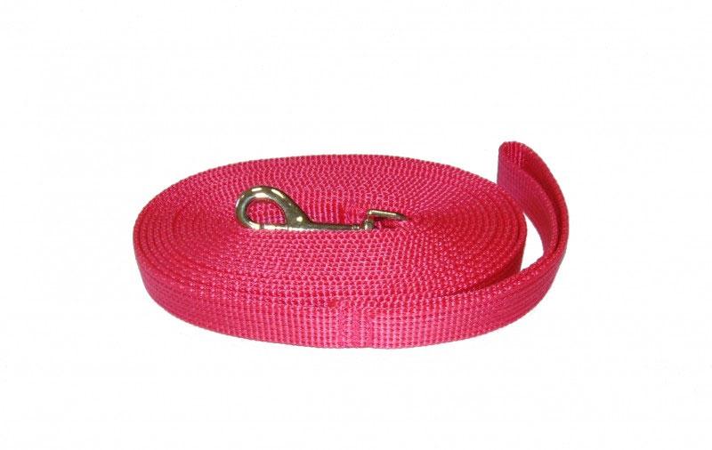 Поводок капроновый для собак Аркон, цвет: розовый, ширина 2 см, длина 7 мпк7м20Поводок для собак Аркон изготовлен из высококачественного цветного капрона и снабжен металлическим карабином. Изделие отличается не только исключительной надежностью и удобством, но и привлекательным современным дизайном. Поводок - необходимый аксессуар для собаки. Ведь в опасных ситуациях именно он способен спасти жизнь вашему любимому питомцу. Иногда нужно ограничивать свободу своего четвероногого друга, чтобы защитить его или себя от неприятностей на прогулке. Длина поводка: 7 м. Ширина поводка: 2 см.