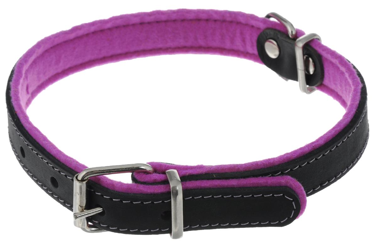 Ошейник для собак Аркон Фетр, цвет: фиолетовый, черный, ширина 2,5 см, длина 57 смоф25фОшейник Аркон Фетр изготовлен из высококачественной натуральной кожи, устойчивой к влажности и перепадам температур, и фетра. Мягкий фетр предотвратит натирание шеи собаки ошейником и позволит ей с комфортом наслаждаться прогулкой. Размер ошейника регулируется с помощью металлической пряжки, которая фиксируется на одном из 6 отверстий изделия. Ошейник отличается высоким качеством, удобством и универсальностью. Минимальный обхват шеи: 35 см. Максимальный обхват шеи: 49 см. Ширина: 2,5 см.