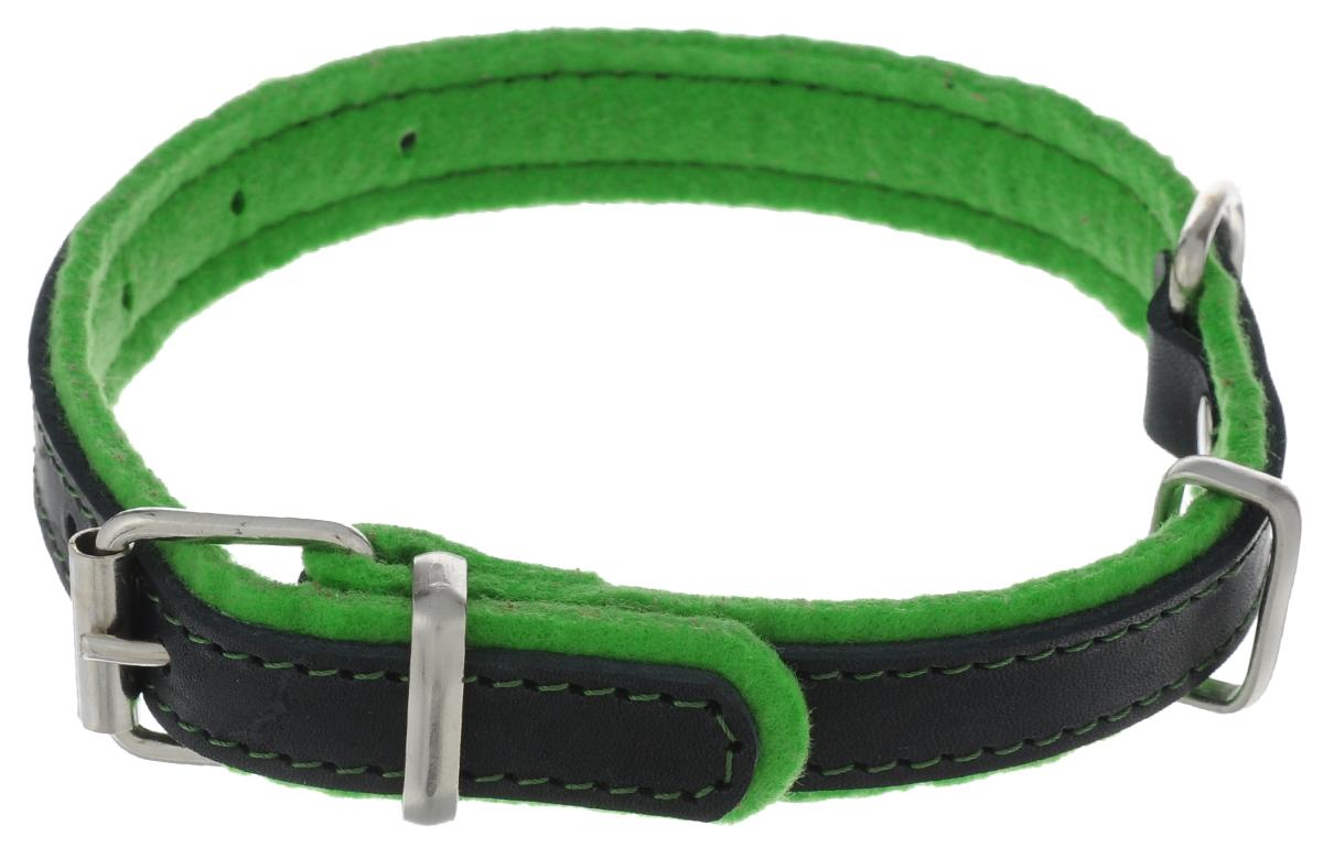 Ошейник для собак Аркон Фетр, цвет: зеленый, черный, ширина 2 см, длина 43,5 смоф20зОшейник Аркон Фетр изготовлен из высококачественной натуральной кожи, устойчивой к влажности и перепадам температур, и фетра. Мягкий фетр предотвратит натирание шеи собаки ошейником и позволит ей с комфортом наслаждаться прогулкой. Размер ошейника регулируется с помощью металлической пряжки, которая фиксируется на одном из 6 отверстий изделия. Ошейник отличается высоким качеством, удобством и универсальностью. Минимальный обхват шеи: 22,5 см. Максимальный обхват шеи: 35 см. Ширина ошейника: 2 см.