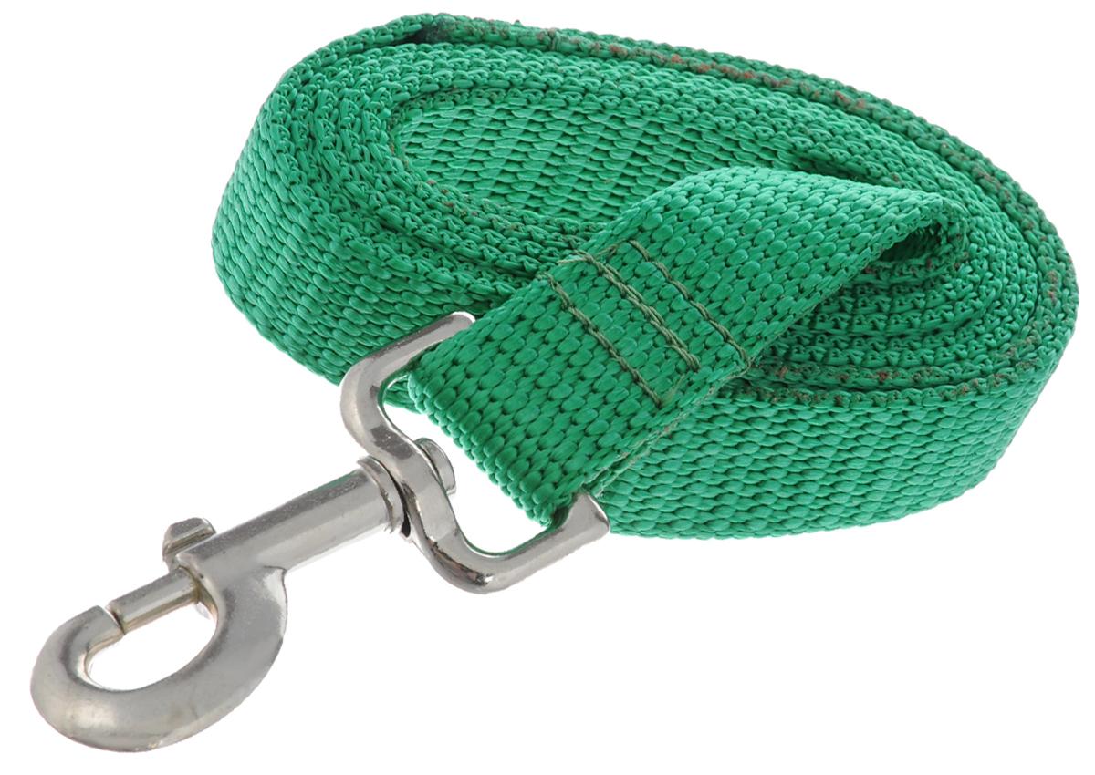 Поводок капроновый для собак Аркон, цвет: зеленый, ширина 2,5 см, длина 1,5 мпк1,5м25Поводок для собак Аркон изготовлен из высококачественного цветного капрона и снабжен металлическим карабином. Изделие отличается не только исключительной надежностью и удобством, но и привлекательным современным дизайном. Поводок - необходимый аксессуар для собаки. Ведь в опасных ситуациях именно он способен спасти жизнь вашему любимому питомцу. Иногда нужно ограничивать свободу своего четвероногого друга, чтобы защитить его или себя от неприятностей на прогулке. Длина поводка: 1,5 м. Ширина поводка: 2,5 см.