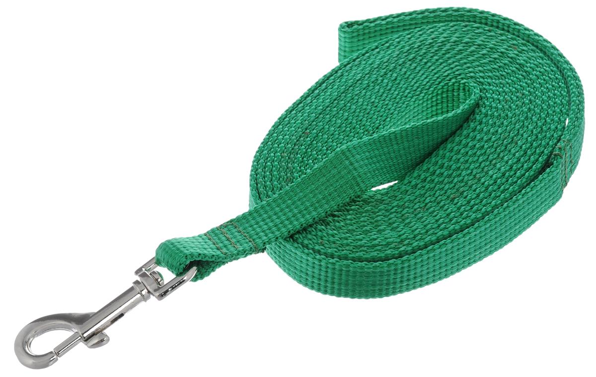 Поводок капроновый для собак Аркон, цвет: зеленый, ширина 2 см, длина 5 мпк5м20Поводок для собак Аркон изготовлен из высококачественного цветного капрона и снабжен металлическим карабином. Изделие отличается не только исключительной надежностью и удобством, но и привлекательным современным дизайном. Поводок - необходимый аксессуар для собаки. Ведь в опасных ситуациях именно он способен спасти жизнь вашему любимому питомцу. Иногда нужно ограничивать свободу своего четвероногого друга, чтобы защитить его или себя от неприятностей на прогулке. Длина поводка: 5 м. Ширина поводка: 2 см.