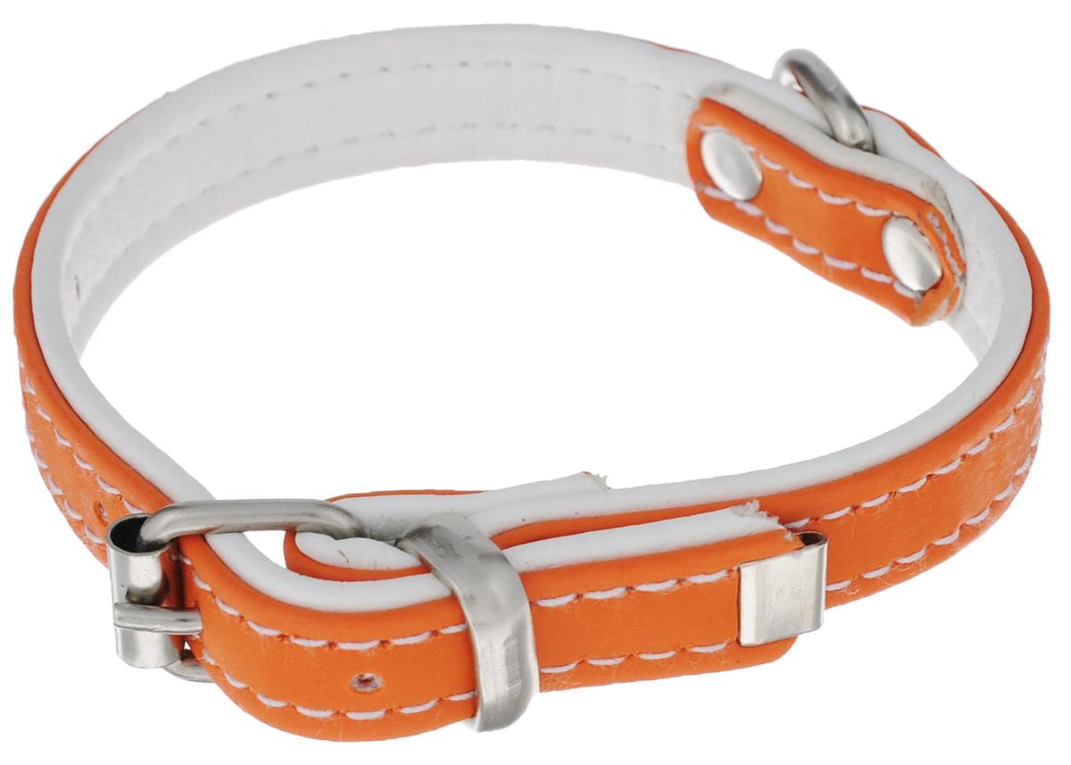 Ошейник Аркон Техно, цвет: оранжевый, белый, ширина 1,2 см, длина 28 смот12оОшейник Аркон Техно изготовлен из высококачественной искусственной кожи, устойчивой к влажности и перепадам температур. Клеевой слой, сверхпрочные нити, крепкие металлические элементы делают ошейник надежным и долговечным. Изделие отличается высоким качеством, удобством и универсальностью. Размер ошейника регулируется при помощи пряжки, зафиксированной на одном из 5 отверстий. Минимальный обхват шеи: 18 см. Максимальный обхват шеи: 24 см. Ширина: 1,2 см.