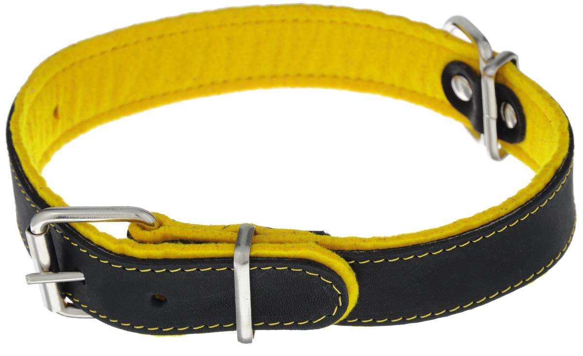 Ошейник Аркон Фетр, цвет: черный, желтый, ширина 3,5 см, длина 61 см. оф35оф35жОшейник Аркон Фетр изготовлен из высококачественной натуральной кожи, устойчивой к влажности и перепадам температур, и фетра. Мягкий фетр предотвратит натирание шеи собаки ошейником и позволит ей с комфортом наслаждаться прогулкой. Клеевой слой, сверхпрочные нити, крепкие металлические элементы делают ошейник надежным и долговечным. Изделие отличается высоким качеством, удобством и универсальностью. Размер ошейника регулируется при помощи пряжки, зафиксированной на одном из 6 отверстий. Минимальный обхват шеи: 41 см. Максимальный обхват шеи: 55 см. Ширина: 3,5 см.