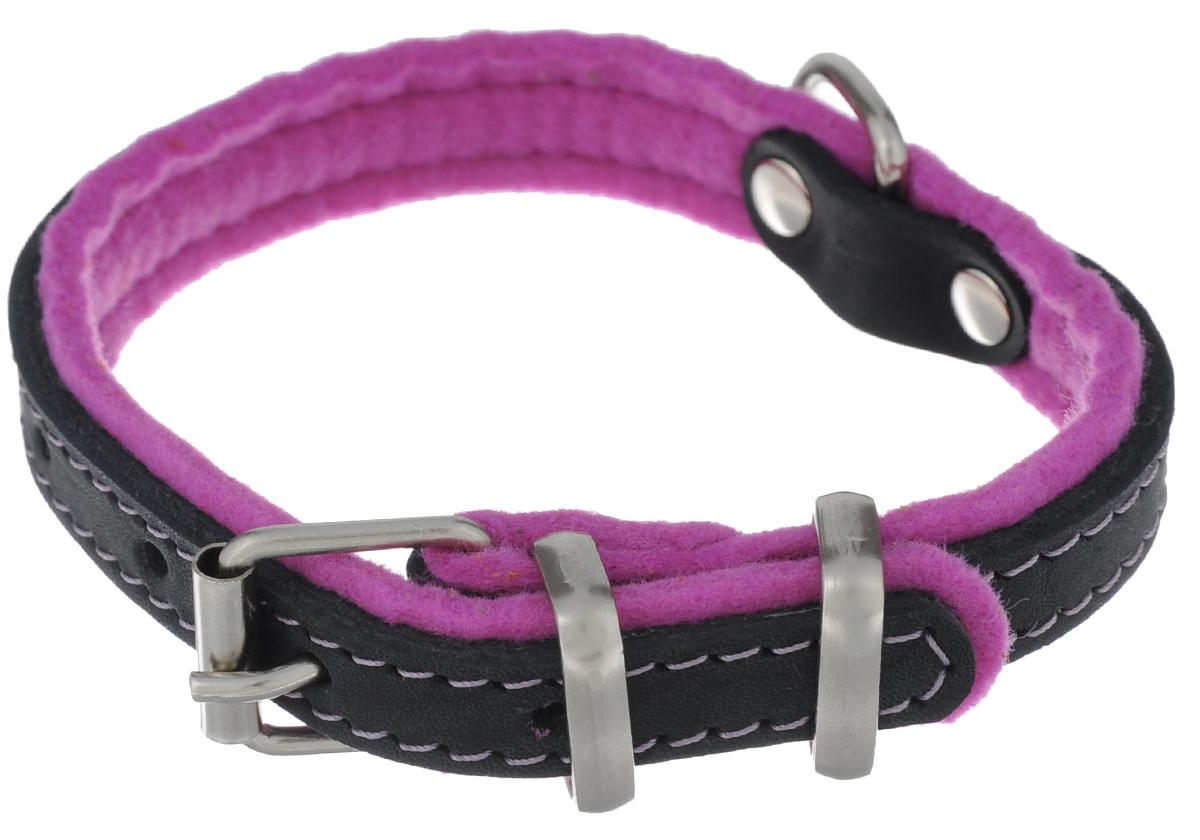 Ошейник для собак Аркон Фетр, цвет: черный, фиолетовый, ширина 1,6 см, длина 32 см. оф16оф16фОшейник Аркон Фетр изготовлен из высококачественной натуральной кожи, устойчивой к влажности и перепадам температур, и фетра. Мягкий фетр предотвратит натирание шеи собаки ошейником и позволит ей с комфортом наслаждаться прогулкой. Клеевой слой, сверхпрочные нити, крепкие металлические элементы делают ошейник надежным и долговечным. Изделие отличается высоким качеством, удобством и универсальностью. Размер ошейника регулируется при помощи пряжки, зафиксированной на одном из 5 отверстий. Минимальный обхват шеи: 21 см. Максимальный обхват шеи: 28 см. Ширина: 1,6 см.