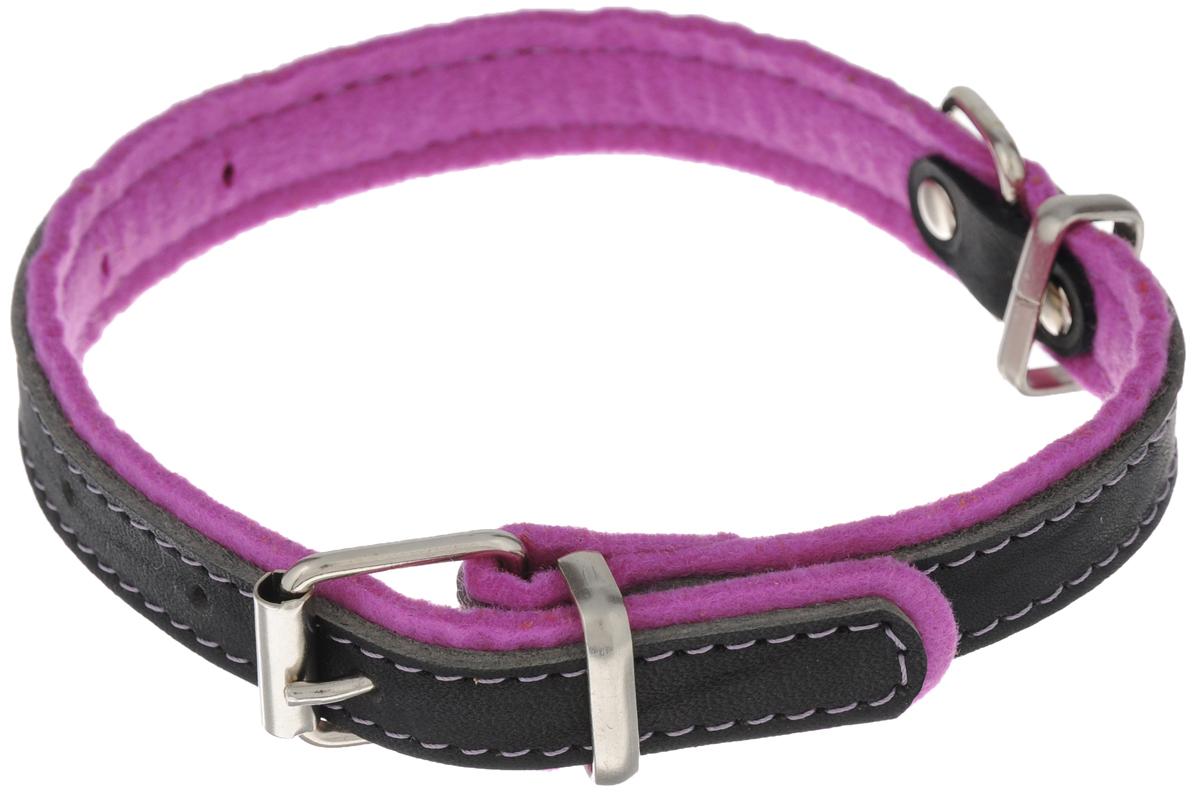 Ошейник для собак Аркон Фетр, цвет: черный, фиолетовый, ширина 2 см, длина 43 см. оф20оф20фОшейник Аркон Фетр изготовлен из высококачественной натуральной кожи, устойчивой к влажности и перепадам температур, и фетра. Мягкий фетр предотвратит натирание шеи собаки ошейником и позволит ей с комфортом наслаждаться прогулкой. Клеевой слой, сверхпрочные нити, крепкие металлические элементы делают ошейник надежным и долговечным. Изделие отличается высоким качеством, удобством и универсальностью. Размер ошейника регулируется при помощи пряжки, зафиксированной на одном из 6 отверстий. Минимальный обхват шеи: 25 см. Максимальный обхват шеи: 36 см. Ширина: 2 см.