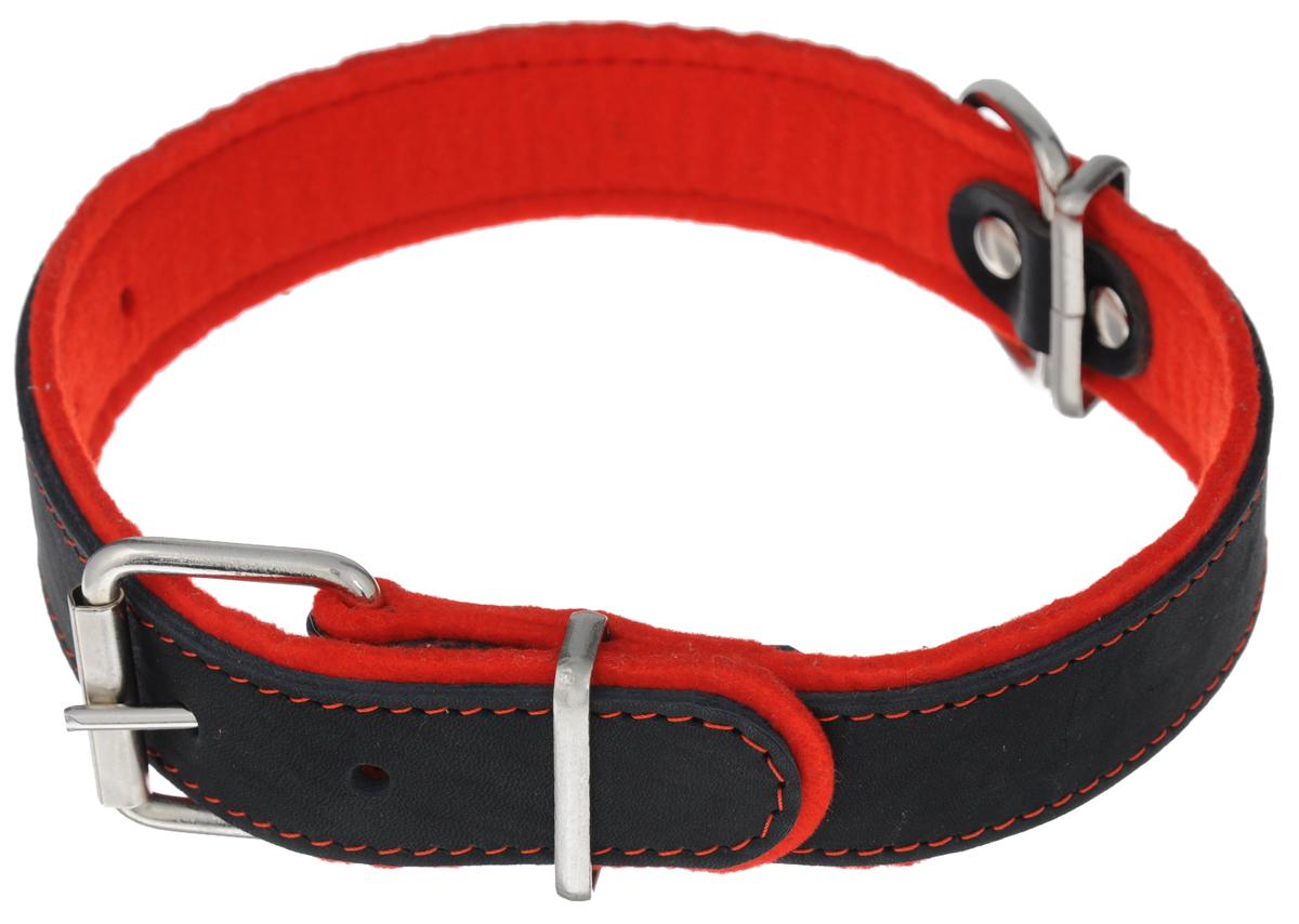 Ошейник Аркон Фетр, цвет: черный, красный, ширина 3,5 см, длина 61 см. оф35оф35кОшейник Аркон Фетр изготовлен из высококачественной натуральной кожи, устойчивой к влажности и перепадам температур, и фетра. Мягкий фетр предотвратит натирание шеи собаки ошейником и позволит ей с комфортом наслаждаться прогулкой. Клеевой слой, сверхпрочные нити, крепкие металлические элементы делают ошейник надежным и долговечным. Изделие отличается высоким качеством, удобством и универсальностью. Размер ошейника регулируется при помощи пряжки, зафиксированной на одном из 6 отверстий. Минимальный обхват шеи: 41 см. Максимальный обхват шеи: 55 см. Ширина: 3,5 см.