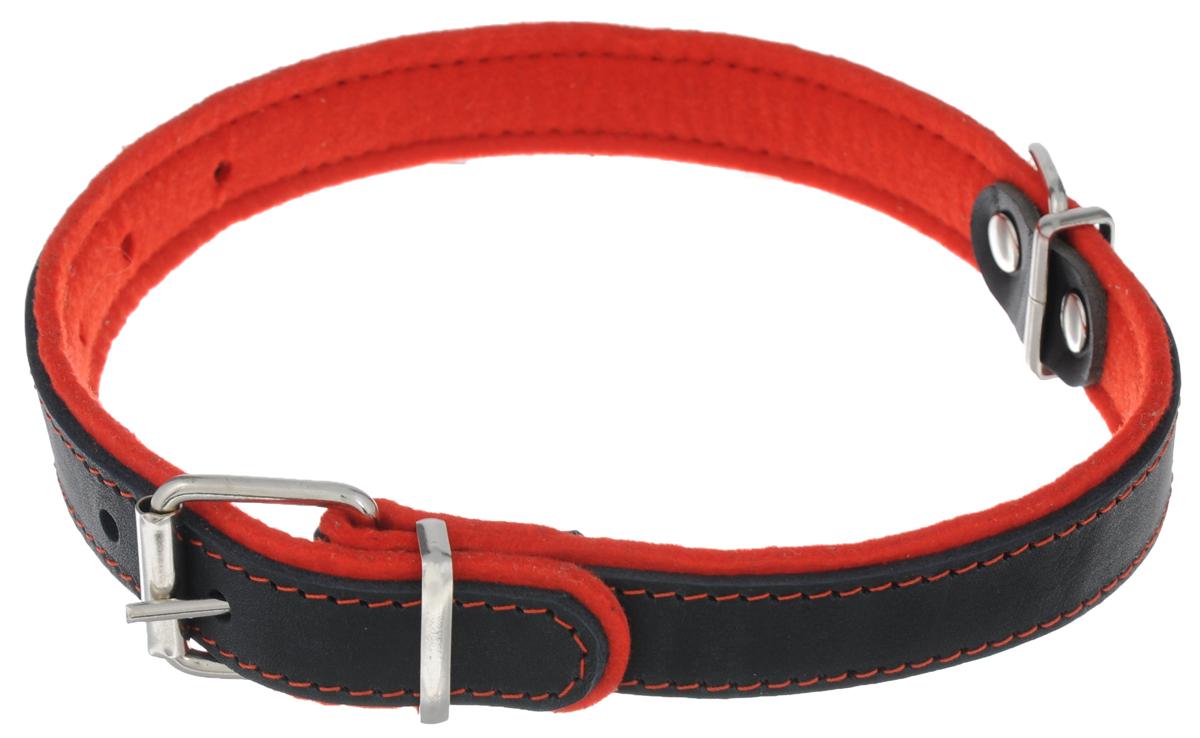 Ошейник для собак Аркон Фетр, цвет: черный, красный, ширина 2,5 см, длина 57 смоф25кОшейник Аркон Фетр изготовлен из высококачественной натуральной кожи, устойчивой к влажности и перепадам температур, и фетра. Мягкий фетр предотвратит натирание шеи собаки ошейником и позволит ей с комфортом наслаждаться прогулкой. Размер ошейника регулируется с помощью металлической пряжки, которая фиксируется на одном из 6 отверстий изделия. Ошейник отличается высоким качеством, удобством и универсальностью. Минимальный обхват шеи: 35 см. Максимальный обхват шеи: 49 см. Ширина: 2,5 см.