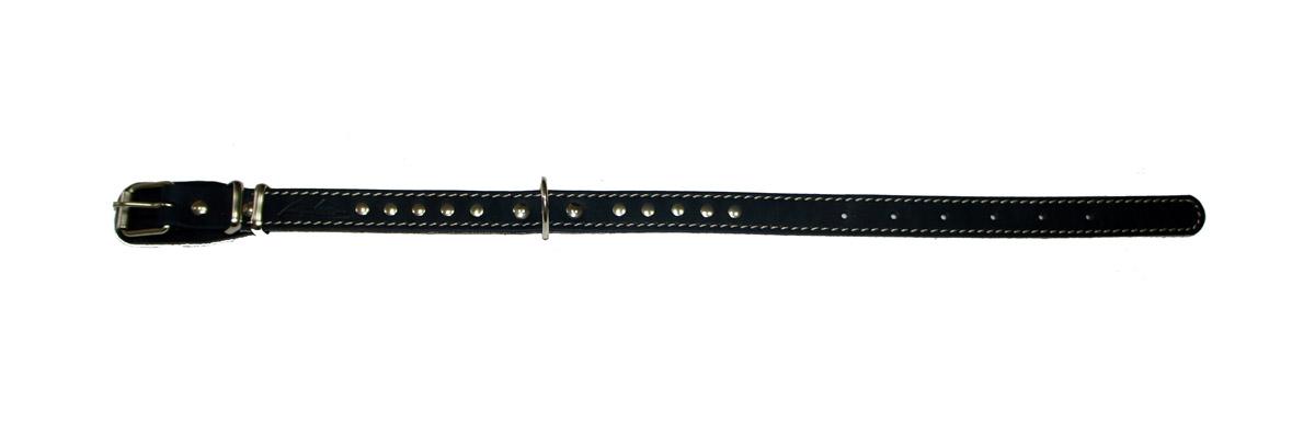 Ошейник для собак Аркон Стандарт, цвет: черный, ширина 2 см, длина 49 см. о20по20пчОшейник для собак Аркон Стандарт изготовлен из металла и натуральной кожи, устойчивой к влажности и перепадам температур. Изделие оснащено петлей для крепления поводка и подкладкой из мягкой ткани. Клеевой слой, сверхпрочные нити, крепкие металлические элементы делают ошейник надежным и долговечным. Ошейник отличается высоким качеством, удобством и универсальностью. Размер регулируется при помощи пряжки, зафиксированной на одном из 6 отверстий. Минимальный обхват шеи: 31,5 см. Максимальный обхват шеи: 43,5 см. Ширина ошейника: 2 см. Длина ошейника: 49 см.