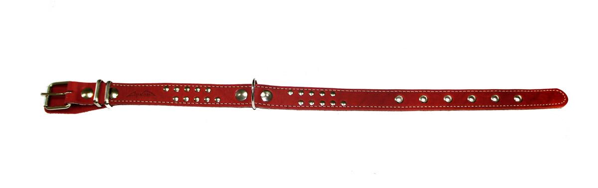 Ошейник Аркон Стандарт, цвет: красный, ширина 2,5 см, длина 57 смо25пкрОшейник Аркон Стандарт с подкладкой из мягкой ткани изготовлен из кожи, устойчивой к влажности и перепадам температур. Клеевой слой, сверхпрочные нити, крепкие металлические элементы делают ошейник надежным и долговечным. Изделие отличается высоким качеством, удобством и универсальностью. Размер ошейника регулируется при помощи пряжки, зафиксированной на одном из 6 отверстий. Минимальный обхват шеи: 38 см. Максимальный обхват шеи: 52 см. Ширина: 2,5 см.