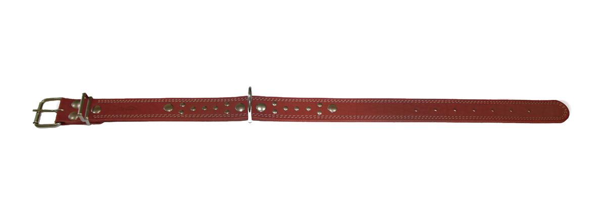 Ошейник Аркон Стандарт, цвет: коньячный, ширина 3,5 см, длина 71 см. о35со35скОшейник Аркон Стандарт изготовлен из натуральной кожи, устойчивой к влажности и перепадам температур. Клеевой слой, сверхпрочные нити, крепкие металлические элементы делают ошейник надежным и долговечным. Изделие отличается высоким качеством, удобством и универсальностью. Размер ошейника регулируется при помощи пряжки, зафиксированной на одном из 7 отверстий. Минимальный обхват шеи: 48 см. Максимальный обхват шеи: 65 см. Ширина: 3,5 см. Длина ошейника: 71 см.
