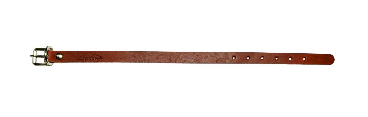 Ошейник для собак Аркон Стандарт, цвет: коньячный, ширина 1,4 см, длина 32 см. о14/1о14/1кОшейник для собак Аркон Стандарт изготовлен из кожи, устойчивой к влажности и перепадам температур. Клеевой слой, сверхпрочные нити, крепкие металлические элементы делают ошейник надежным и долговечным. Изделие отличается высоким качеством, удобством и универсальностью. Размер ошейника регулируется при помощи пряжки, зафиксированной на одном из 6 отверстий. Минимальный обхват шеи: 21 см. Максимальный обхват шеи: 29 см. Ширина: 1,4 см.