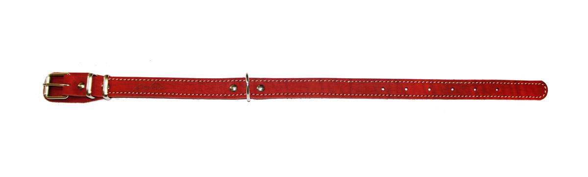 Ошейник Аркон Стандарт, цвет: красный, ширина 2 см, длина 50 смо20/1крОшейник Аркон Стандарт изготовлен из кожи, устойчивой к влажности и перепадам температур. Клеевой слой, сверхпрочные нити, крепкие металлические элементы делают ошейник надежным и долговечным. Изделие отличается высоким качеством, удобством и универсальностью. Размер ошейника регулируется при помощи пряжки, зафиксированной на одном из 6 отверстий. Минимальный обхват шеи: 31 см. Максимальный обхват шеи: 43 см. Ширина: 2 см.