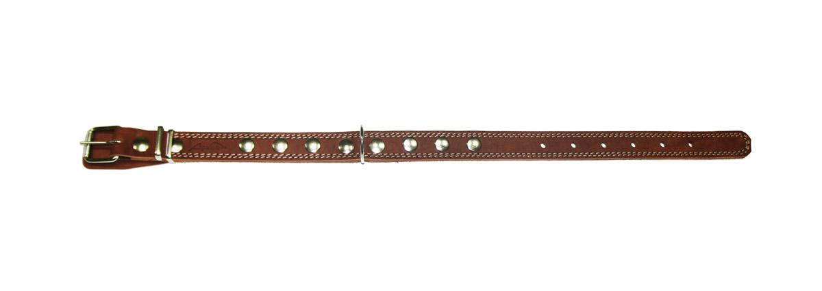 Ошейник Аркон Стандарт, цвет: коньячный, ширина 2,5 см, длина 70 см. о25/2до25/2дкОшейник Аркон Стандарт изготовлен из кожи, устойчивой к влажности и перепадам температур. Клеевой слой, сверхпрочные нити, крепкие металлические элементы делают ошейник надежным и долговечным. Изделие отличается высоким качеством, удобством и универсальностью. Размер ошейника регулируется при помощи пряжки, зафиксированной на одном из 7 отверстий. Минимальный обхват шеи: 47 см. Максимальный обхват шеи: 64 см. Ширина: 2,5 см.