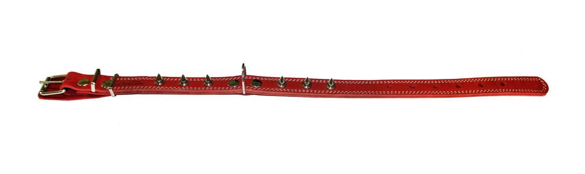 Ошейник Аркон Стандарт, с шипами, цвет: красный, ширина 2,5 см, длина 71 смо25/2дшкрОшейник Аркон Стандарт, декорированный металлическими шипами, изготовлен из кожи, устойчивой к влажности и перепадам температур. Клеевой слой, сверхпрочные нити, крепкие металлические элементы делают ошейник надежным и долговечным. Изделие отличается высоким качеством, удобством и универсальностью. Размер ошейника регулируется при помощи пряжки, зафиксированной на одном из 7 отверстий. Минимальный обхват шеи: 48 см. Максимальный обхват шеи: 65 см. Ширина: 2,5 см.м