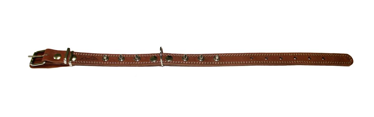 Ошейник Аркон Стандарт, с шипами, цвет: коньячный, ширина 2,5 см, длина 57 смо25/2шкОшейник Аркон Стандарт изготовлен из натуральной кожи, устойчивой к влажности и перепадам температур, и декорирован металлическими шипами. Клеевой слой, сверхпрочные нити, крепкие металлические элементы делают ошейник надежными и долговечными. Изделие отличается высоким качеством, удобством и универсальностью. Размер ошейника регулируется при помощи пряжки, зафиксированной на одном из 6 отверстий. Минимальный обхват шеи: 37 см. Максимальный обхват шеи: 51 см. Ширина: 2,5 см.
