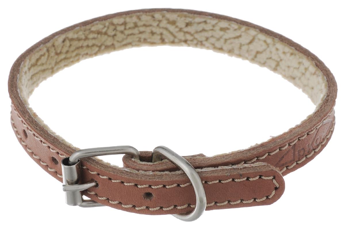 Ошейник для собак Аркон Стандарт, цвет: коньячный, ширина 1,4 см, длина 32 см. о14по14пкОшейник для собак Аркон Стандарт изготовлен из натуральной кожи, устойчивой к влажности и перепадам температур. Клеевой слой, сверхпрочные нити, крепкие металлические элементы делают ошейник надежным и долговечным. На стороне, соприкасающейся с шеей, имеется подкладка из мягкой ткани. Изделие отличается высоким качеством, удобством и универсальностью. Размер ошейника регулируется при помощи пряжки, зафиксированной на одном из 6 отверстий. Минимальный обхват шеи: 20,5 см. Максимальный обхват шеи: 28,5 см. Ширина ошейника: 1,4 см. Длина ошейника: 32 см.