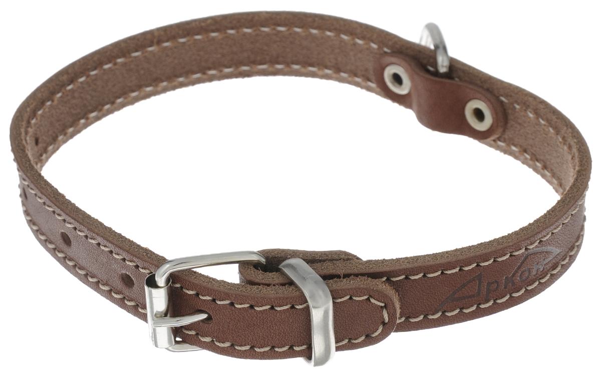 Ошейник для собак Аркон Стандарт, цвет: коньячный, ширина 1,6 см, длина 37 см. о16/1о16/1кОшейник для собак Аркон Стандарт изготовлен из металла и натуральной кожи, устойчивой к влажности и перепадам температур. Изделие оснащено петлей для крепления поводка. Ошейник отличается высоким качеством, удобством и универсальностью. Размер регулируется при помощи пряжки, зафиксированной на одном из 5 отверстий. Обхват шеи: 25 - 33 см. Ширина ошейника: 1,6 см. Длина ошейника: 37 см.