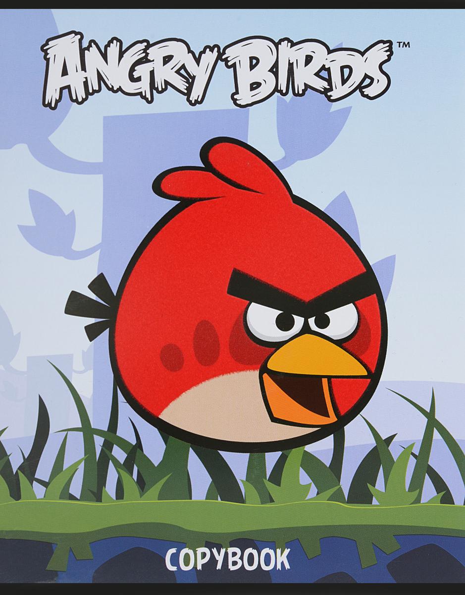 Hatber Тетрадь Angry Birds 48 листов в клетку цвет голубой48Т5флB1_10348Тетрадь Hatber Angry Birds отлично подойдет для занятий школьнику или студенту. Обложка, выполненная из плотного картона, позволит сохранить тетрадь в аккуратном состоянии на протяжении всего времени использования. Изделие оформлено бархатистым изображением злой птички. Внутренний блок тетради, соединенный скрепками, состоит из 48 листов белой бумаги в голубую клетку с полями.