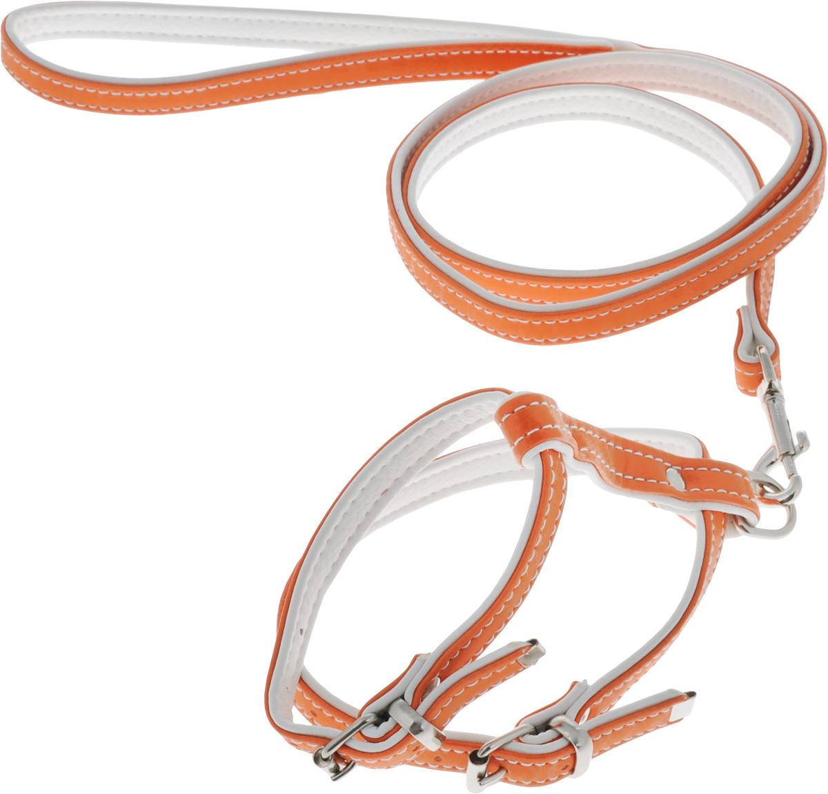 Комплект для животных Аркон Техно, цвет: оранжевый, белый, 2 предметакт12оКомплект для животных Аркон Техно состоит из шлейки и поводка. Изделия изготовлены из искусственной кожи, фурнитура - из сверхпрочных сплавов металла. Надежная конструкция обеспечит вашему четвероногому другу комфортную и безопасную прогулку. Такой комплект подходит как для кошек, так и для мелких пород собак. Длина поводка: 1,1 м. Ширина поводка: 1,4 см. Обхват шеи: 18,5 - 25 см. Обхват груди: 29 - 35,5 см. Длина спинки: 10,5 см. Ширина ремней: 1,4 см; 1,6 см.