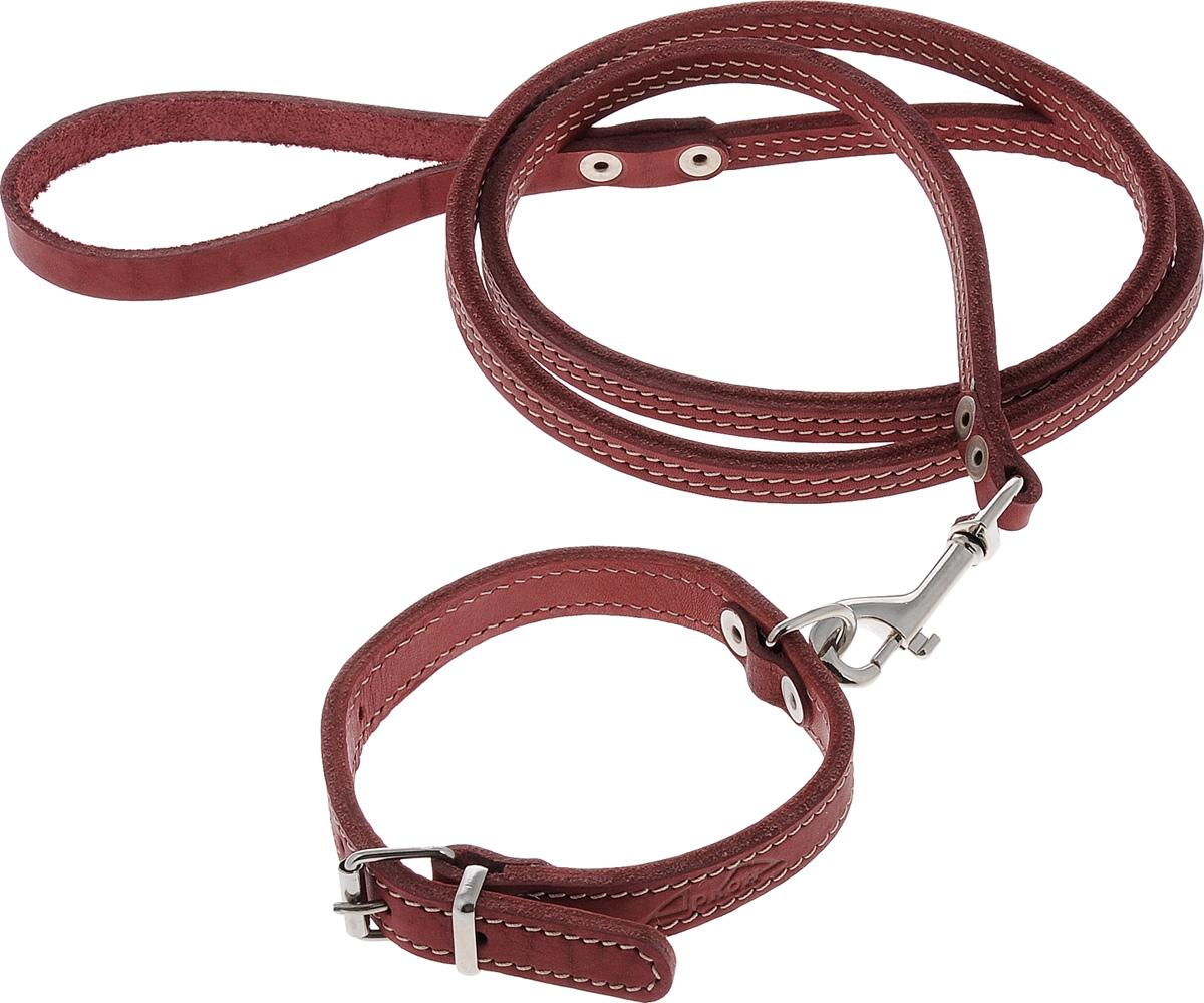 Комплект для собак Аркон Стандарт №7, цвет: красный, 2 предметак7крКомплект для животных Аркон Стандарт №7 состоит из ошейника и поводка. Изделия изготовлены из высококачественного металла и прошитой в два слоя натуральной кожи. Надежная конструкция обеспечит вашему четвероногому другу комфортную и безопасную прогулку. Такой комплект подходит для мелких и средних пород собак. Длина поводка: 1,4 м. Ширина поводка: 1 см. Обхват шеи: 25 - 33 см. Ширина ошейника: 1,6 см.
