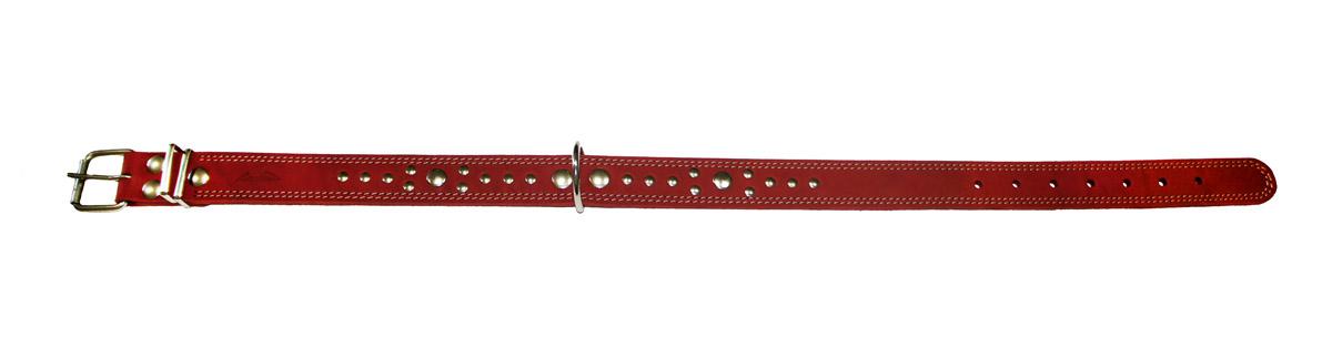 Ошейник Аркон Стандарт, цвет: красный, ширина 3,5 см, длина 81 смо35/2дкрОшейник Аркон Стандарт изготовлен из натуральной кожи, устойчивой к влажности и перепадам температур. Клеевой слой, сверхпрочные нити, крепкие металлические элементы делают ошейник надежным и долговечным. Изделие отличается высоким качеством, удобством и универсальностью. Размер ошейника регулируется при помощи пряжки, зафиксированной на одном из 7 отверстий. Минимальный обхват шеи: 58 см. Максимальный обхват шеи: 75 см. Ширина: 3,5 см.