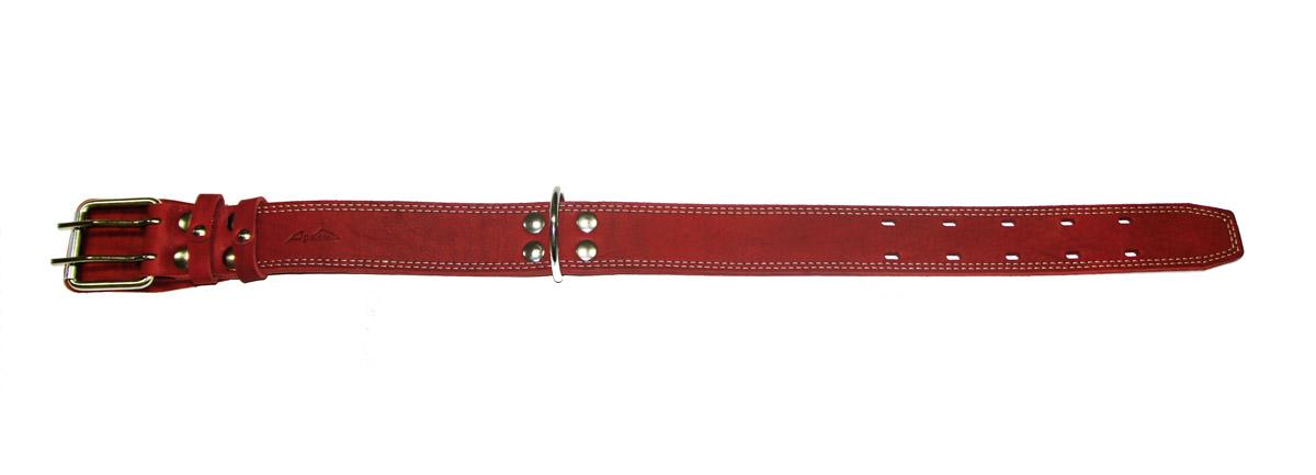 Ошейник Аркон Стандарт, цвет: красный, ширина 4,5 см, длина 77 смо45/2дкрОшейник Аркон Стандарт изготовлен из кожи, устойчивой к влажности и перепадам температур. Клеевой слой, сверхпрочные нити, крепкие металлические элементы делают ошейник надежным и долговечным. Изделие отличается высоким качеством, удобством и универсальностью. Размер ошейника регулируется при помощи пряжки, зафиксированной на одной из 5 двойных отверстий. Минимальный обхват шеи: 54 см. Максимальный обхват шеи: 69 см. Ширина: 4,5 см.